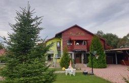 Vacation home Braşov county, Nella Vacation Home
