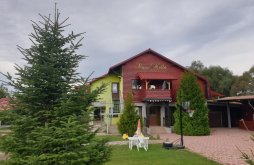 Vacation home near Prejmer fortified church, Nella Vacation Home