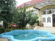 Cazare Gothatea, Casa Elysee