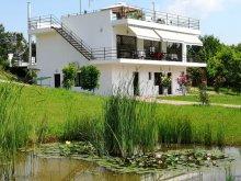 Accommodation Dorobanți, Agroturism 55 Guesthouse