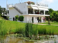 Bed & breakfast Teremia Mare Bath, Agroturism 55 Guesthouse
