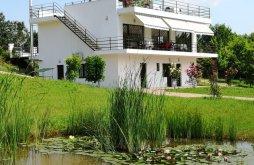 Cazare Sintar cu wellness, Pensiunea Agroturism 55