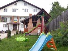 Accommodation Pietrișu, Trache Guesthouse