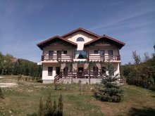 Accommodation Scheiu de Jos, Margareta B&B