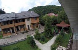 Accommodation near Slănic Moldova Bath, Lorena Villa