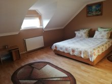 Accommodation Hațeg, Silvia Guesthouse