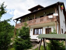 Accommodation Bistrița Bârgăului Fabrici, Edy Vacation Home
