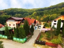 Apartment Argeș county, Piscul Soarelui Agrotouristic Guesthouse