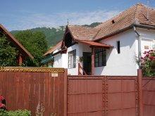 Accommodation Petreștii de Jos, András Guesthouse