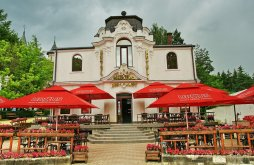 Villa Ciocănești, Maestro Hotel