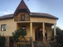 Accommodation Marghita, Sofia Guesthouse