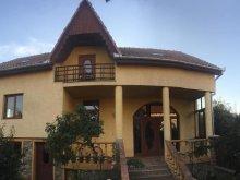 Accommodation Șărmășag, Sofia Guesthouse