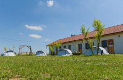 Bed & breakfast Nisipeni, Kentaur Horse Farm, Guesthouse and Camping
