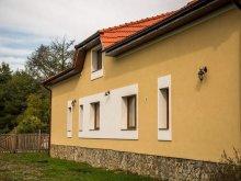Panzió Buziásfürdő (Buziaș), Maria Panzió
