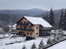 Accommodation Cornești, Ticino Guesthouse