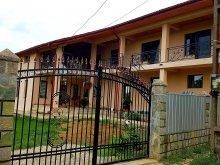 Accommodation Scânteiești, Haralambie Guesthouse