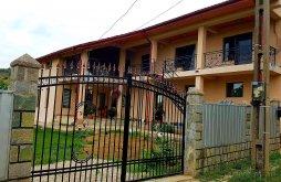 Pensiune Dorobanțu, Casa Haralambie