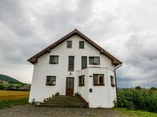 Accommodation Mureş county, Aria Villa