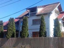Szállás Argeș megye, Eden Panzió