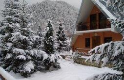 Villa Rucăreni, Sabina Villa