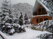 Villa Știețești, Sabina Villa