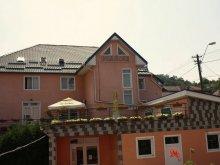 Accommodation Nemșa, Flora Villa