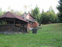 Accommodation Izvoare, Patakvölgye Guesthouse