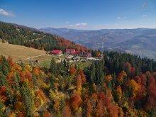 Pachet Răchitiș, Complex Turistic Alpina Blazna