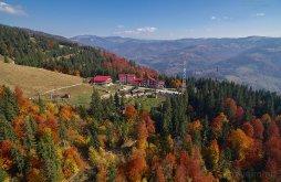 Panzió Șanț, Alpina Blazna Panzió