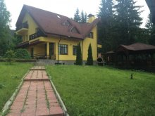 New Year's Eve Package Braşov county, Sunset Villas