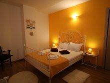 Accommodation Teremia Mare Bath, Confort Sunrise Apartment