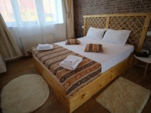 New Year's Eve Package Chesinț, Rustic Apartment