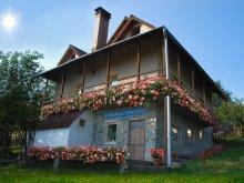 Accommodation Voineșița, Codruț Vacation Home