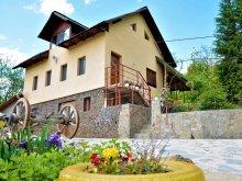 Chalet Pleșoiu (Livezi), Forest House Chalet