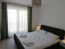 Accommodation Ghimbav, Coresi Studio Apartment