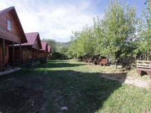 Accommodation Bistricioara, Straja Guesthouse