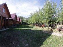 Vendégház Bălușești (Icușești), Straja Vendégház