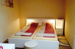 Accommodation Jebucu, Adina Guesthouse