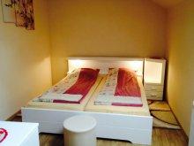 Case de oaspeți Travelminit, Pensiunea Adina