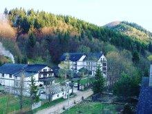Accommodation Bukovina, Travelminit Voucher, Octavian B&B