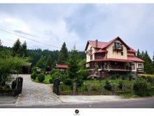 Villa Alsótömös (Timișu de Jos), Fox Valley Villa