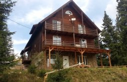 Accommodation Băișoara, Zori Vacation home