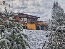 Accommodation Dorna-Arini, Escape Chalet