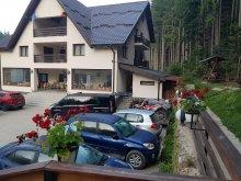 Pensiune județul Bistrița-Năsăud, Pensiunea Perla Pădurii