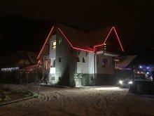 Accommodation Timișu de Jos, Green Park B&B