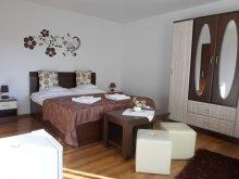 Accommodation Ocna de Jos, Zoltán & Erika Guesthouse