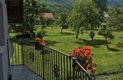 Accommodation Bran, Luca Ama Villa