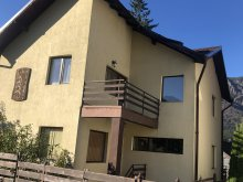 Nyaraló Saru, Andreea View Villa