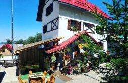 Accommodation Straja, Rustik Villa