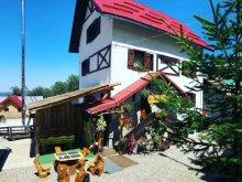 Villa Hunedoara county, Rustik Villa